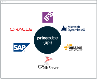 Erp integration, BI tools integration, software integration
